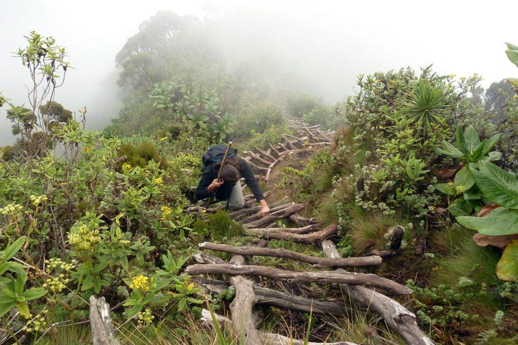 Hike Mount Sabyinyo, hiking virunga mountains in Uganda