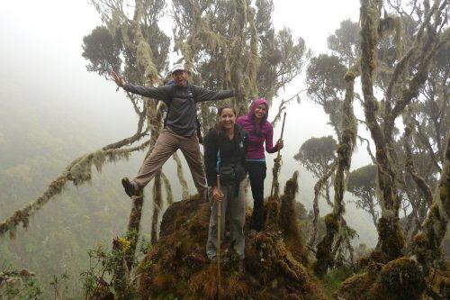 Primates & Volcano Trekking (Road Trip)