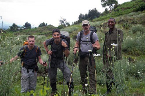 Golden Monkey trekking in Mgahinga National Park, uganda active adventures and experiences