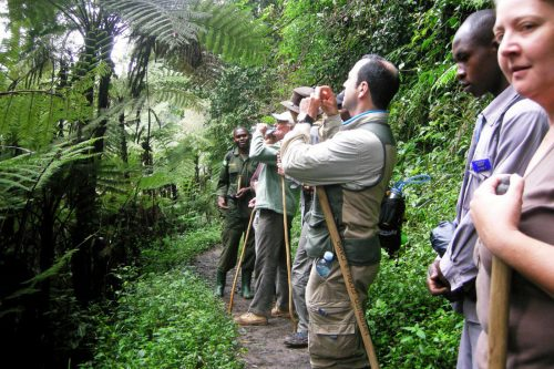 Walking batwa trail in Nkuringo Bwindi
