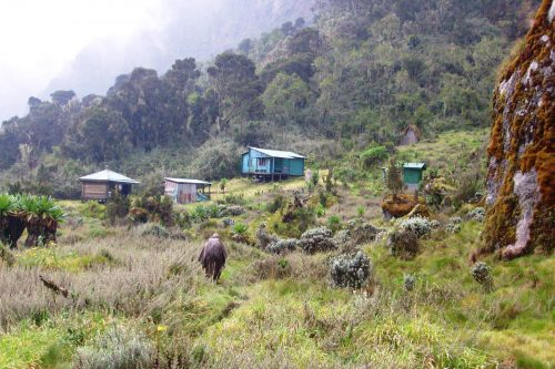 Guy Yeoman Hut trekking Rwenzori mountains in Uganda